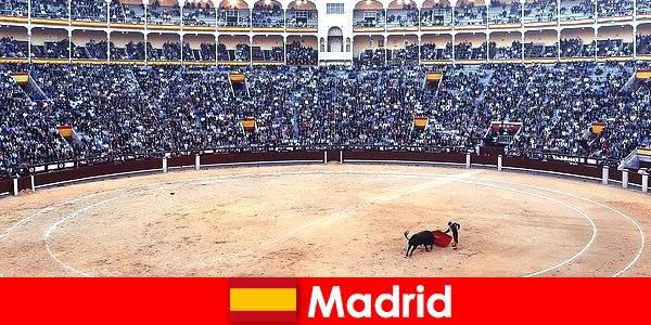 Традиционные фестивали в Мадриде поражают каждого незнакомца