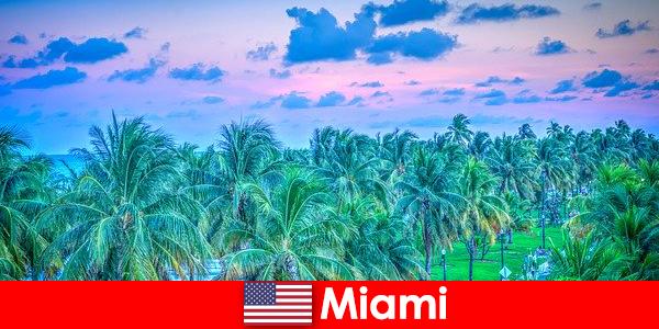 Потрясающая природа Майами с великолепной тропической природой