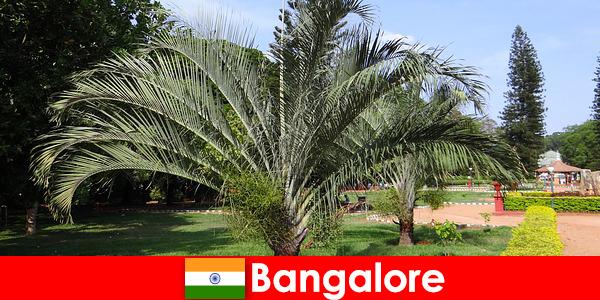 Приятный климат Бангалора круглый год стоит посетить каждому иностранцу