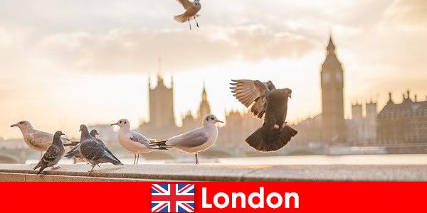 Места, представляющие интерес для посетителей Лондона