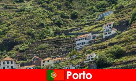 Отдых в Порту для любителей вина со всего мира