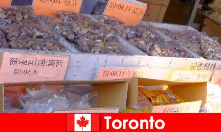 Торонто и его особенно разнообразная кухня не оставит ни одного путешественника голодным