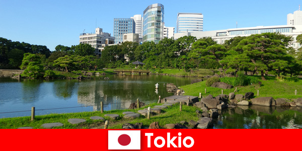В Токио, Япония, туристы наслаждаются старыми и новыми традициями.
