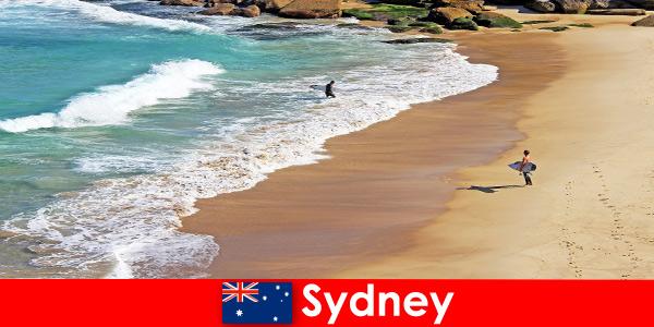 Серфингисты наслаждаются незабываемым отдыхом в Сиднее, Австралия