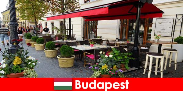 Краткосрочный отпуск в Будапеште, Венгрия для посетителей, любящих высококлассную кухню.